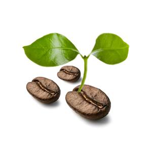 Commercial Coffee Machines rental flexability